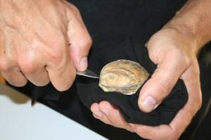 La dégustation des huîtres